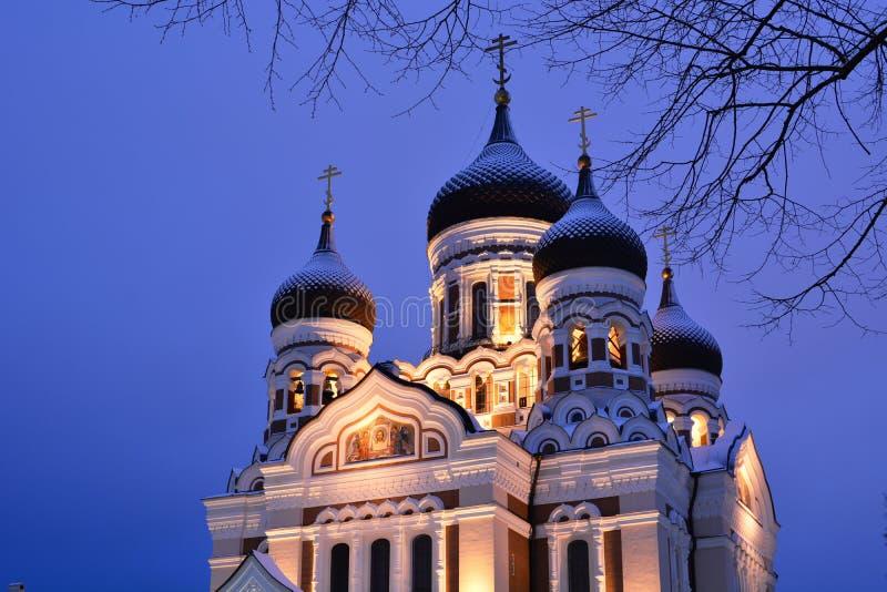 Alexander Nevsky Cathedral Domes Toompea tallinn Estonia foto de archivo libre de regalías