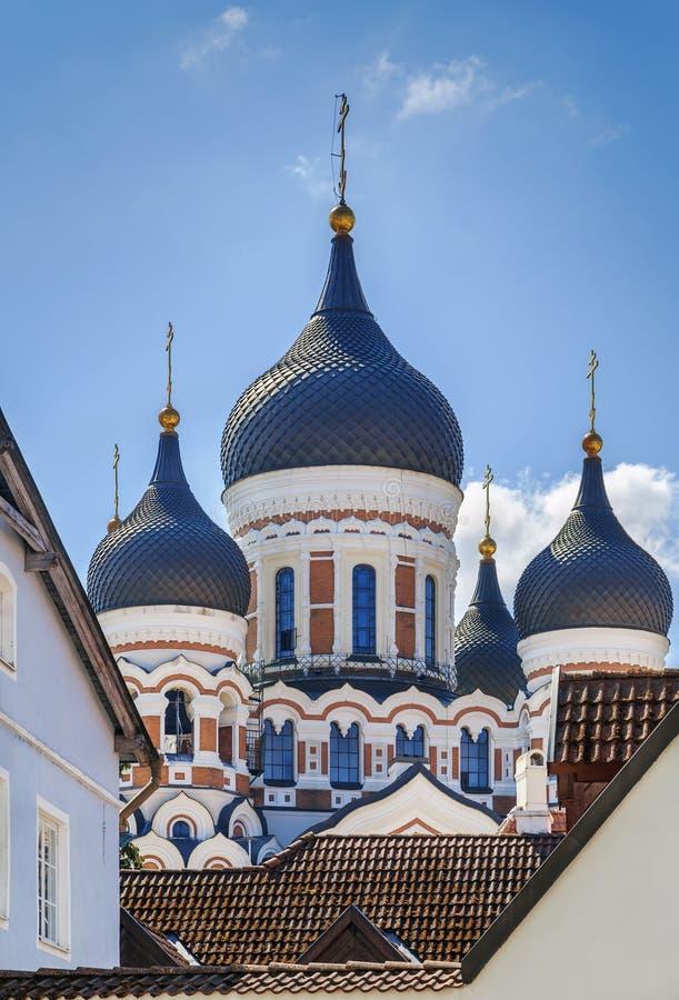 Alexander Nevsky Cathedral, Tallinn, Estonia fotografia stock libera da diritti
