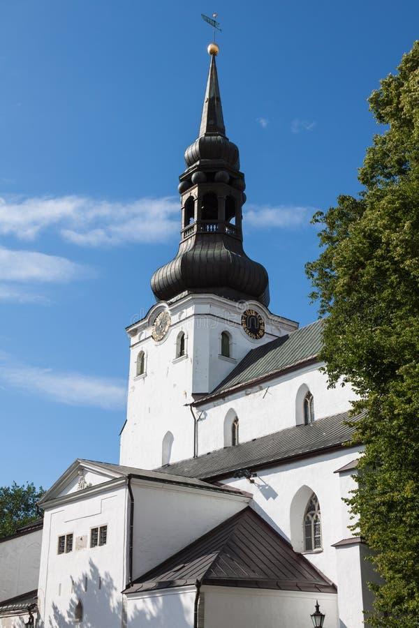 Alexander Nevsky Cathedral. Tallinn, Estonia fotografie stock