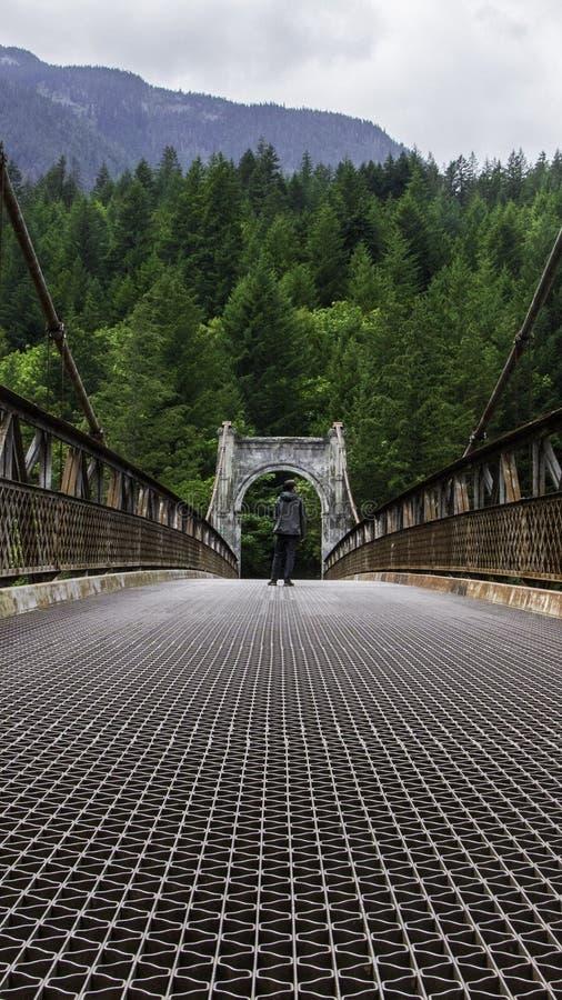 Alexandra mostu kolumbia brytyjska Kanada ośniedziały most zdjęcia royalty free
