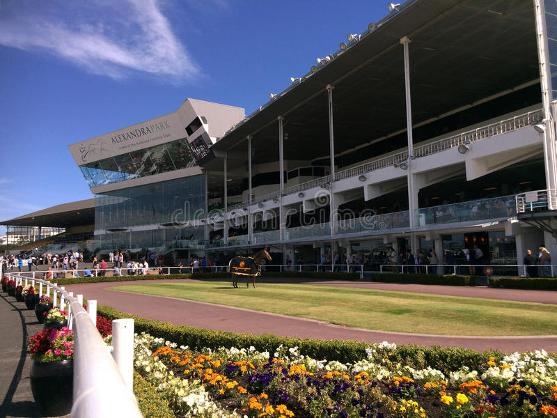 Alexandra Park Raceway in Auckland New Zealand stock photography