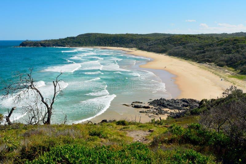 Alexandria Bay no parque nacional de Noosa em Queensland, Austrália imagem de stock royalty free