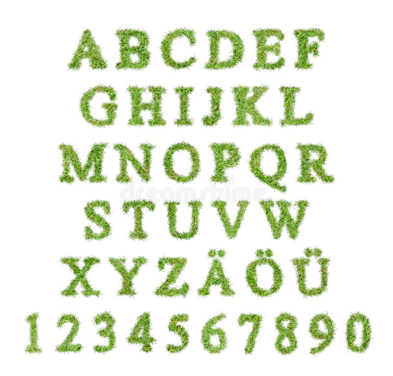 Alfabet met groene grasbrief vector illustratie