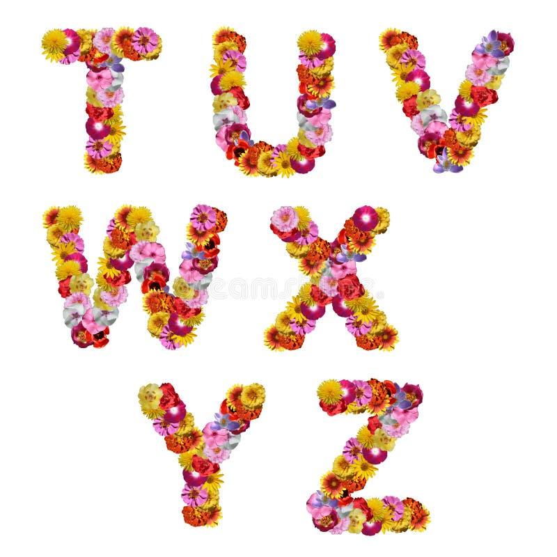 alfabetblommor royaltyfri fotografi