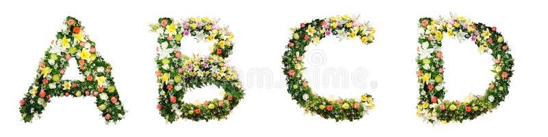 Alfabetbokstav som ETT B C D gjorde från isolerade färgrika blommor på w arkivfoton