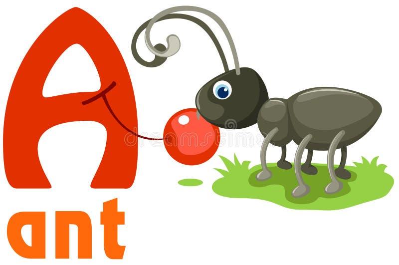 Alfabeto animal A stock de ilustración