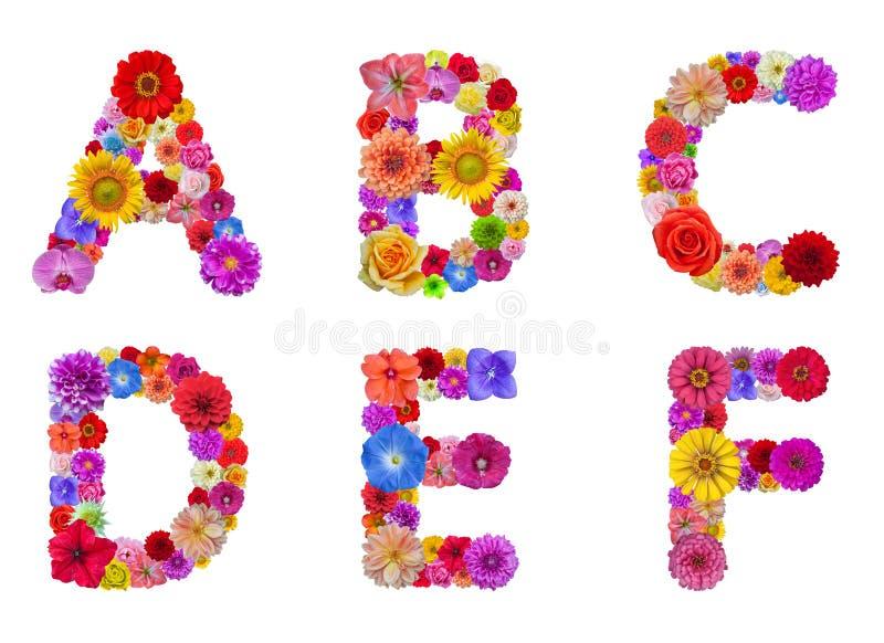 Alfabeto da flor foto de stock royalty free