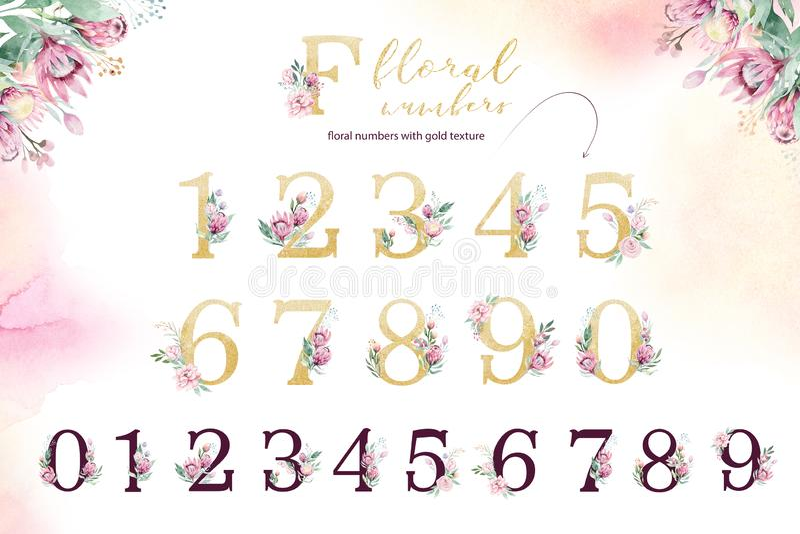 Alfabeto da letra do brilho do ouro Fontes e números alfabéticos dourados isolados no fundo branco Texto floral da fonte do casam ilustração do vetor