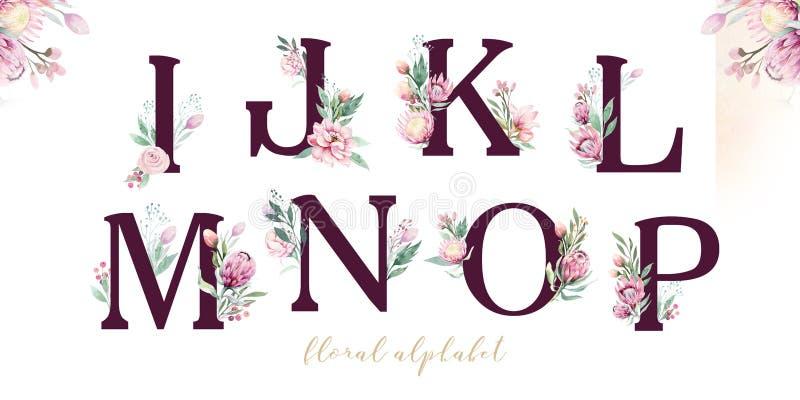 Alfabeto de la letra del brillo del oro Fuentes alfabéticas de oro aisladas y números en el fondo blanco Texto floral de la fuent libre illustration