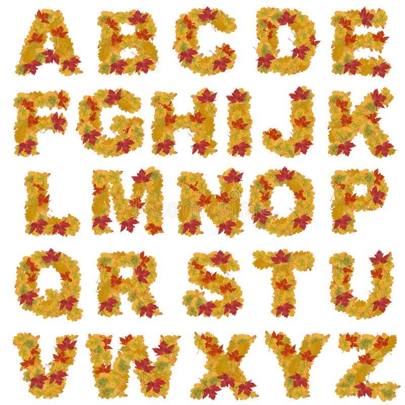 Alfabeto De Las Hojas De Otoño Foto de archivo - Imagen de arce ...