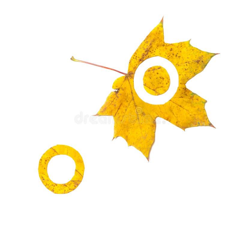 Alfabeto del otoño La letra O se corta de la hoja de arce amarilla stock de ilustración