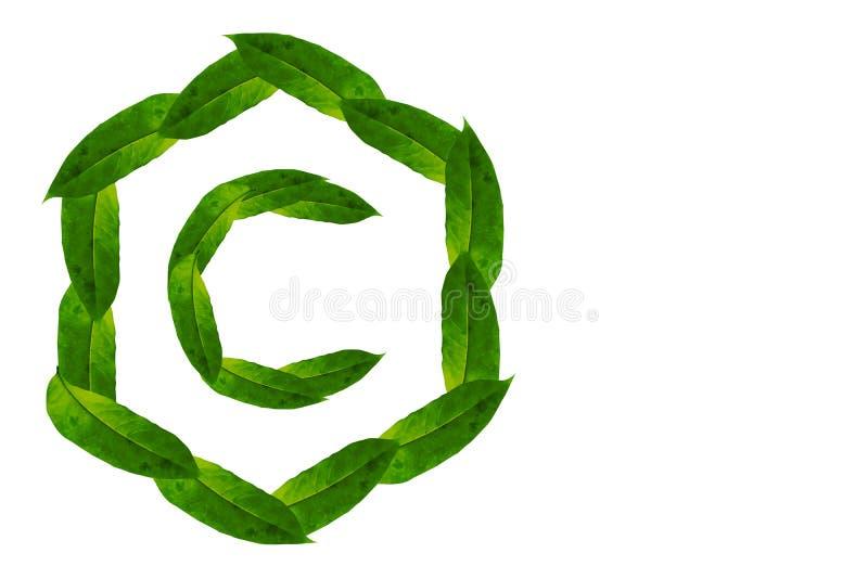 Alfabeto di concetto della natura del logo C delle foglie verdi con forma di esagono Logo di concetto della lettera C illustrazione di stock