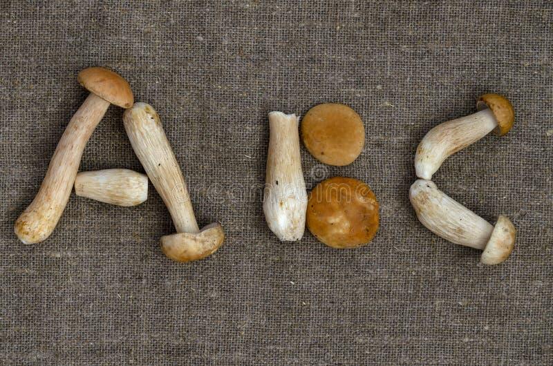 Alfabeto do alimento com o cogumelo do boleto no fundo do pano de saco foto de stock royalty free