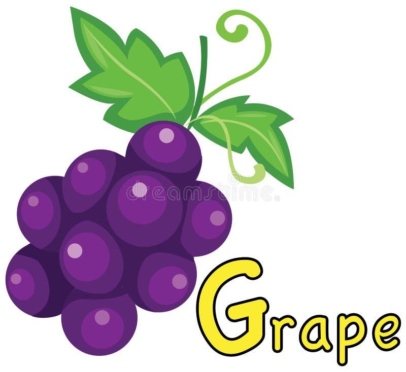 Alfabeto G para la uva libre illustration