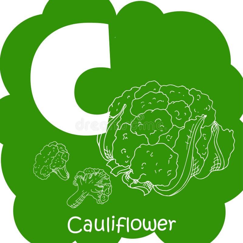 Alfabeto para crianças com vegetais C-couve-flor saudável do ABC da letra ilustração royalty free