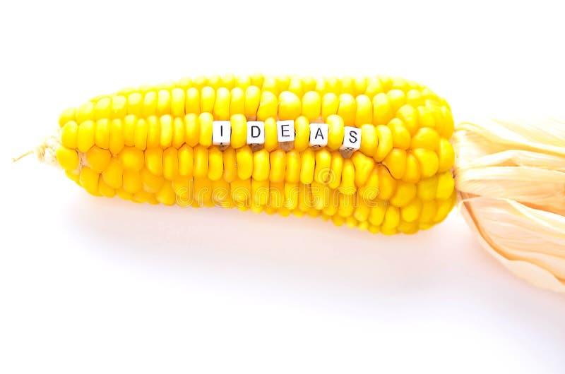 Alfabetstuk speelgoed met een woordideeën als zaad van droog graan worden ontworpen dat stock afbeeldingen