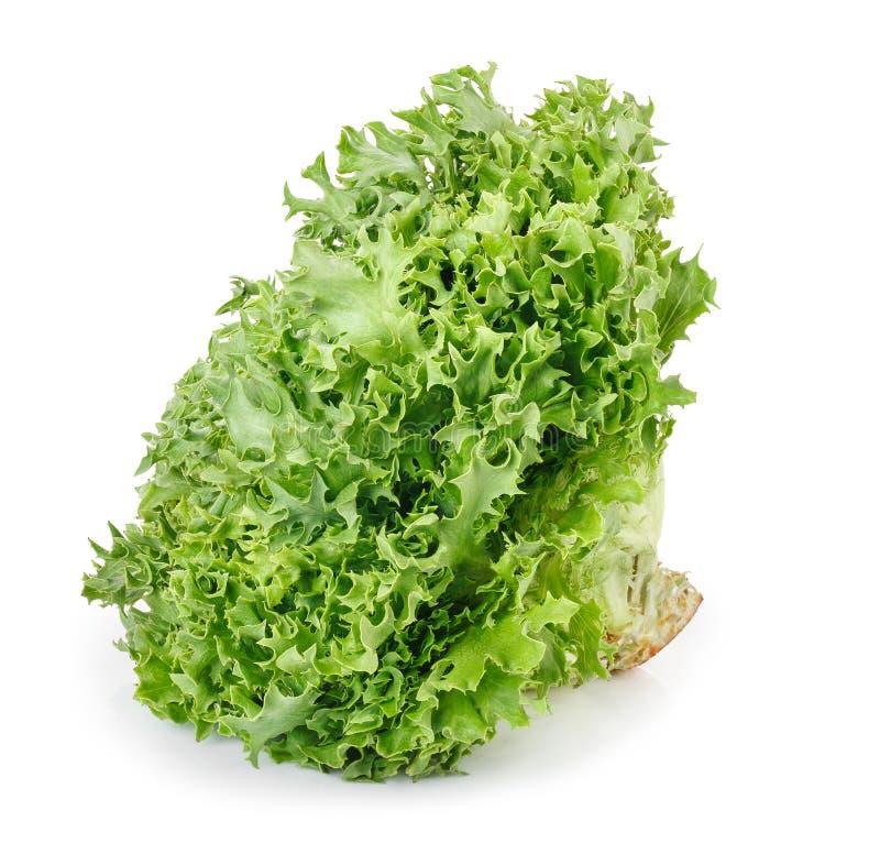 Alface verde isolada no branco fotografia de stock royalty free