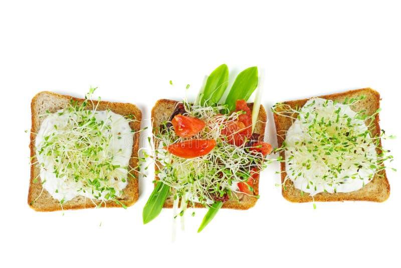 Alfalfa verde brota, tomates frescos y secos en rodajas tostadas de pan integral aisladas de fondo blanco imagenes de archivo
