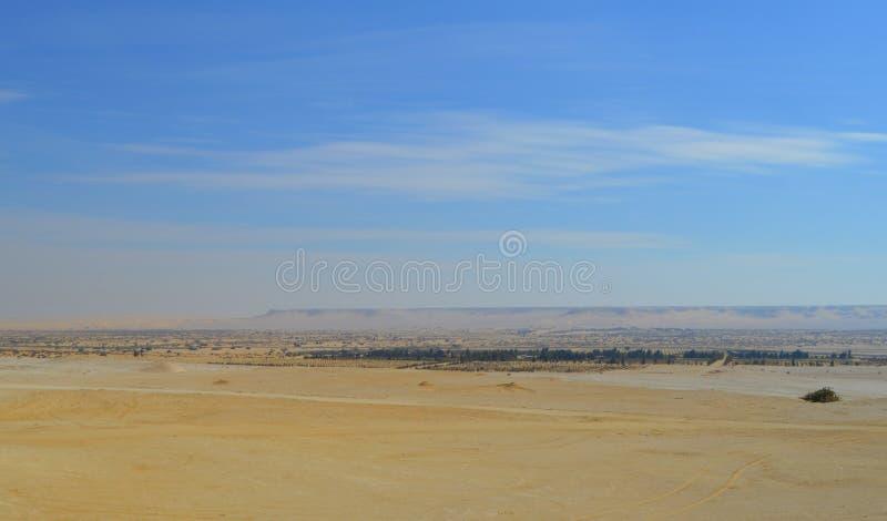 Alfayum沙漠,埃及 库存照片
