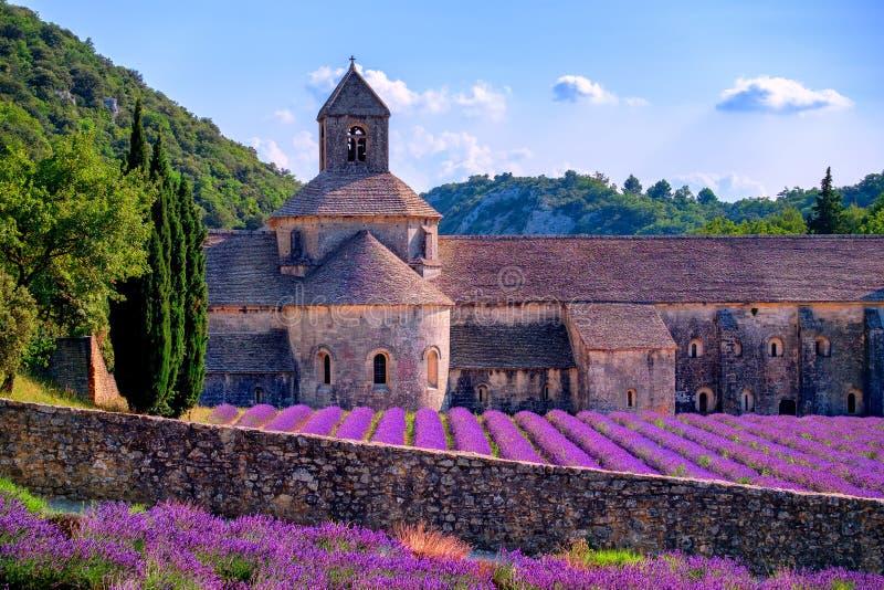 A alfazema coloca no monastério de Senanque, Provence, França fotos de stock