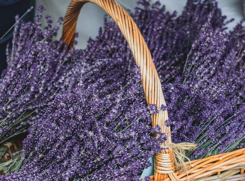Alfazema cultivado localmente em uma cesta de vime no mercado local dos fazendeiros imagem de stock royalty free