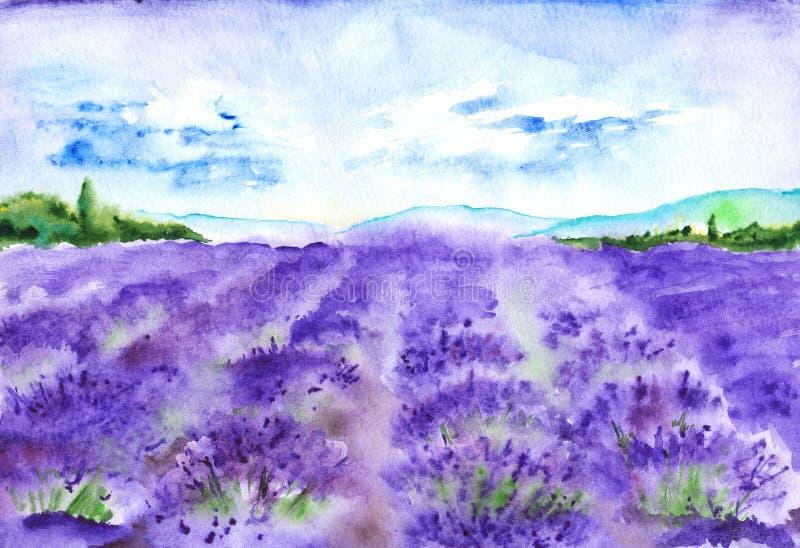 A alfazema da aquarela coloca a paisagem de França Provence da natureza ilustração stock