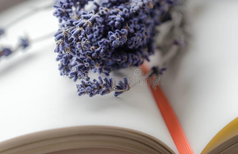 Alfazema e livro fotos de stock