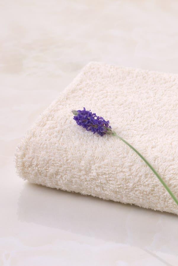 Alfazema e toalha fotos de stock