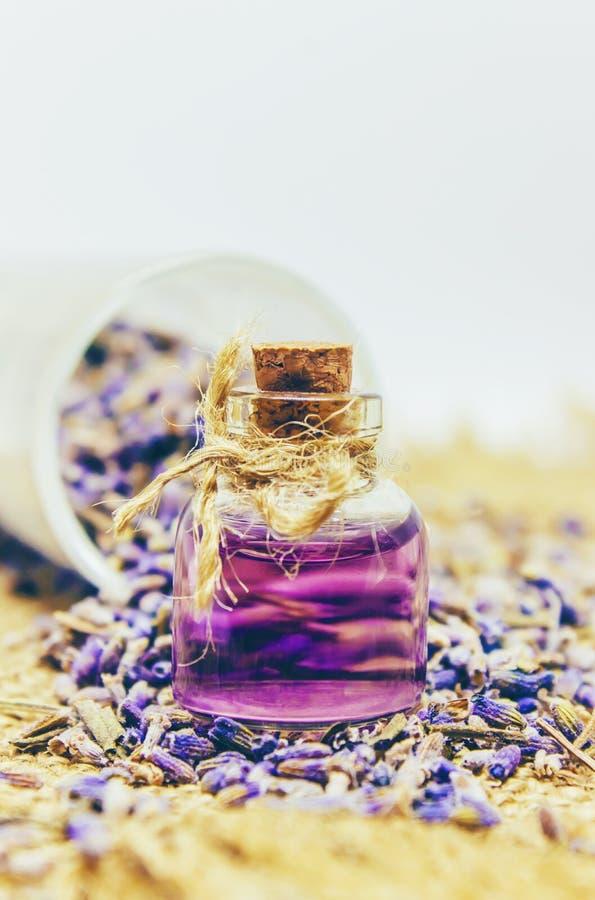 Alfazema secada, óleo essencial foto de stock royalty free