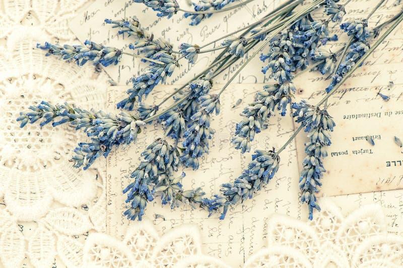 A alfazema secada floresce o estilo retro dos cartão do vintage imagens de stock