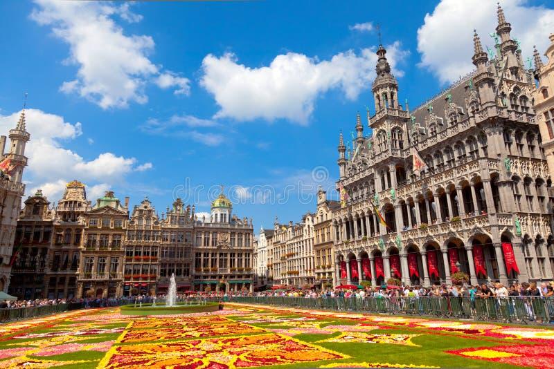 Alfombra 2010, Bruselas de la flor. imagen de archivo libre de regalías
