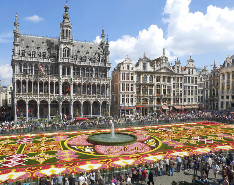 Alfombra de la flor en Bruselas 2010 foto de archivo libre de regalías