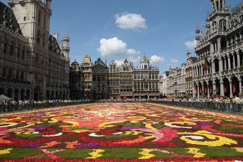 Alfombra de la flor en Bruselas fotografía de archivo