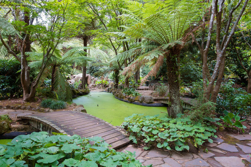 Alfred Nicholas Memorial Gardens fotografering för bildbyråer