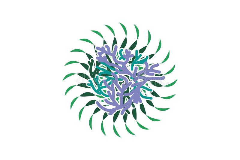 Alga Logo Designs Inspiration Isolated su fondo bianco illustrazione vettoriale