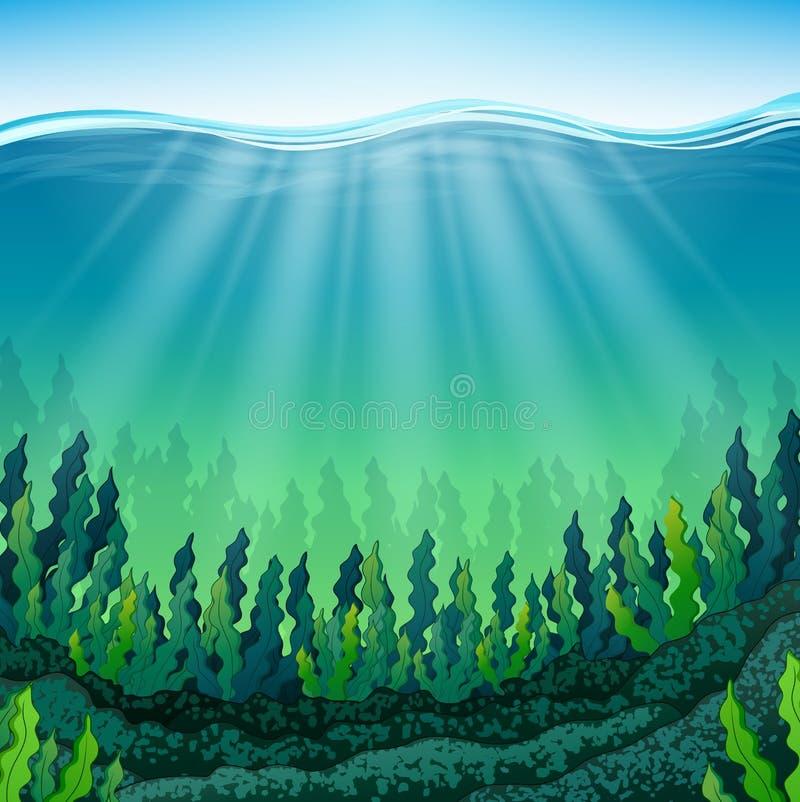Alga marina en el suelo marino ilustración del vector