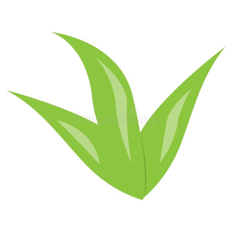 Alga marina verde aislada ilustración del vector