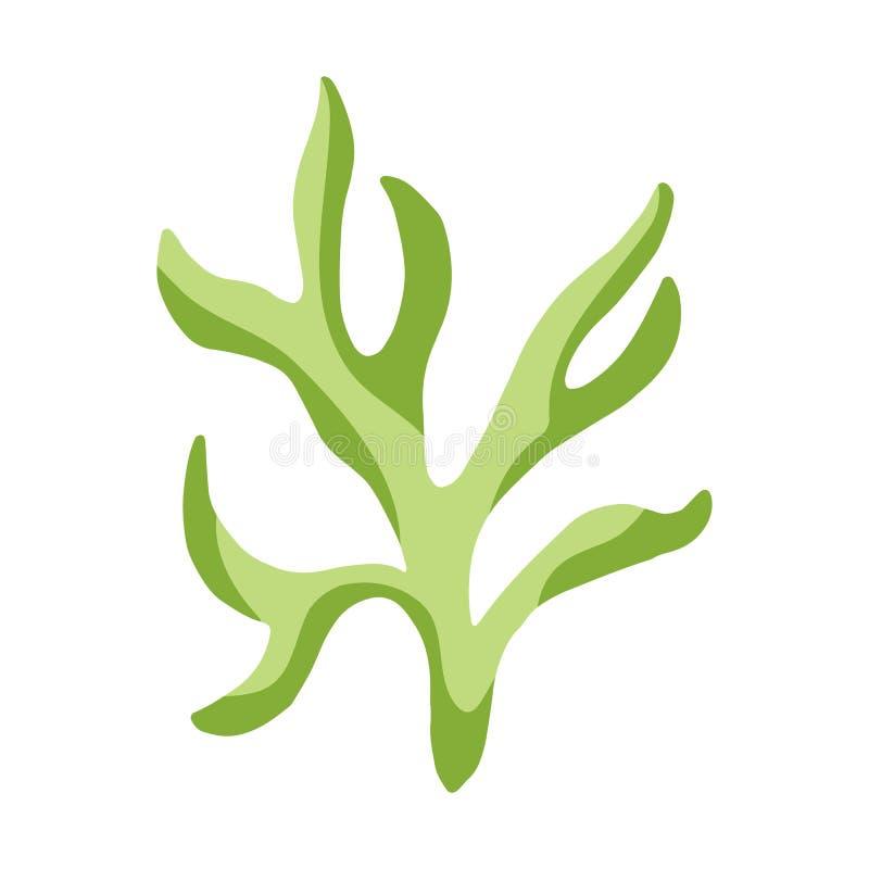 Alga odosobniony krzak akwarium rośliny podwodny element ilustracja wektor