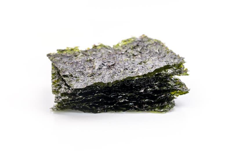 Alga seca, imagens de stock royalty free