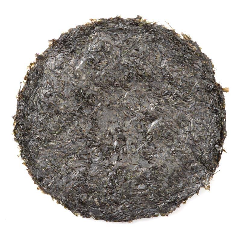 Alga secca il nero crudo immagine stock libera da diritti