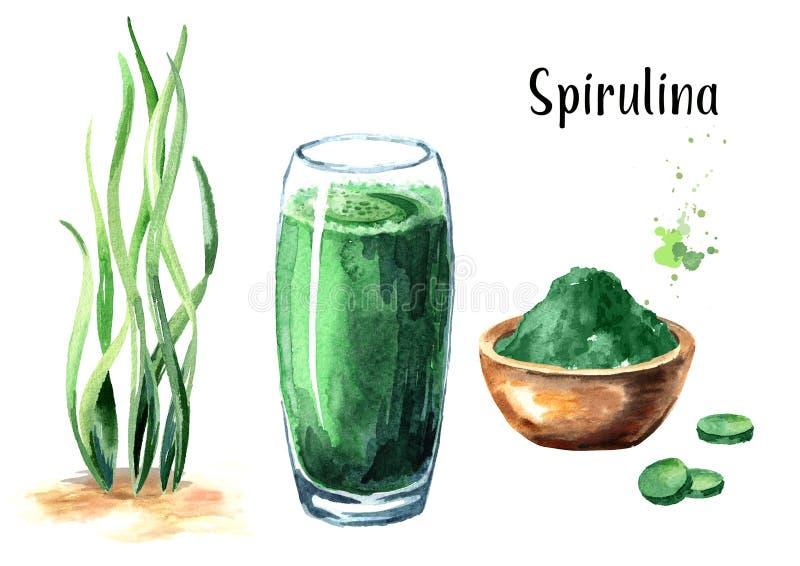 Alga Spirulina con polvere, il frullato e le compresse Superfood Illustrazione disegnata a mano dell'acquerello, isolata su fondo illustrazione di stock