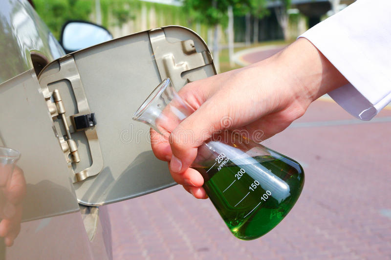 Algae biofuel royalty free stock photo