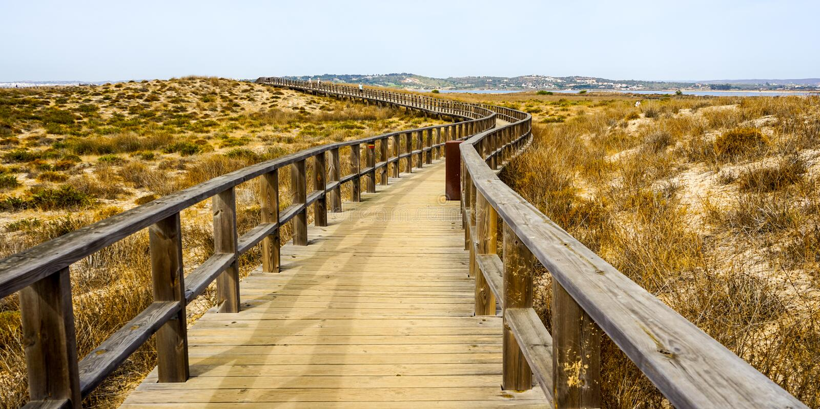 Perfect for birdwatching near Lagos. Algarve area is well known in Portugal for sunny days, long sand beaches, turquoise water and caves. Perfect in October to stock photo