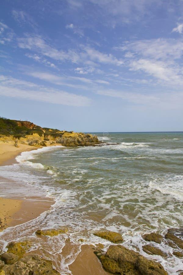 algarve kust royaltyfria bilder
