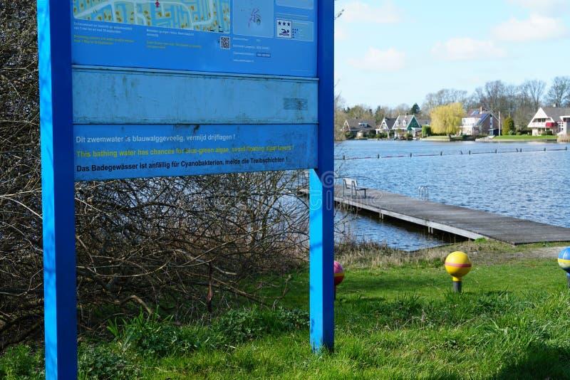 Algas azuis que advertem nos Países Baixos foto de stock