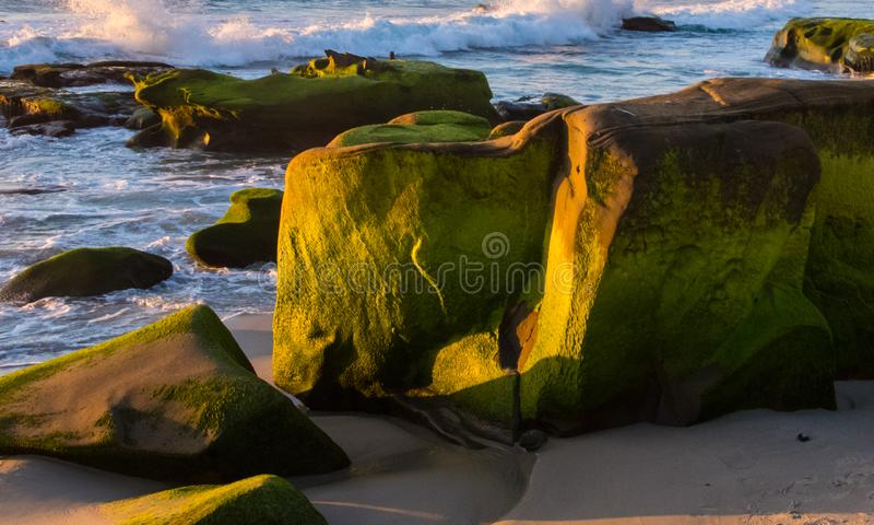 Alge-behandelde die rotsvormingen en getijdenpools at low tide langs Vreedzame Kust worden blootgesteld stock foto's