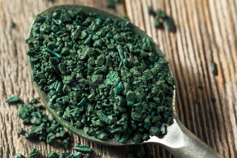 Algea organique vert cru Spirulina image libre de droits