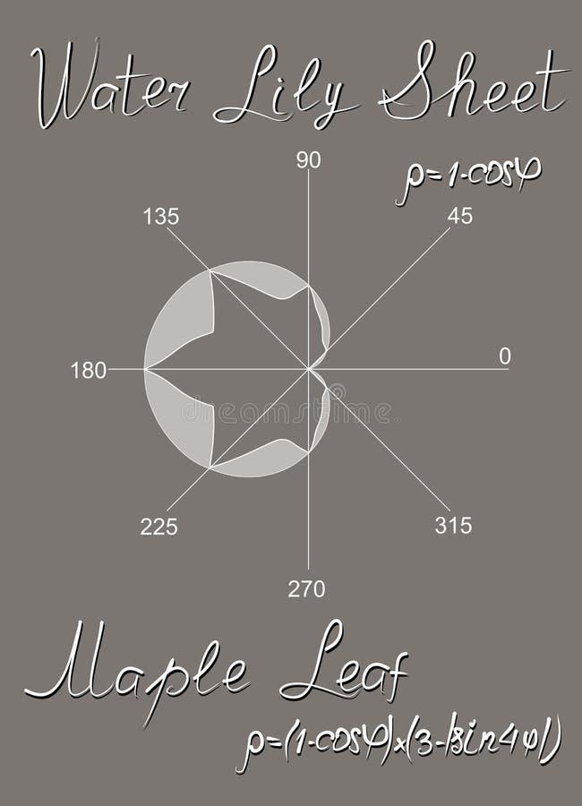 Algebraische Modelle der Ahornblatt- und Seeroseschafe, konstruiert im Polarkoordinatensystem und in den trigonometrischen Formel stock abbildung