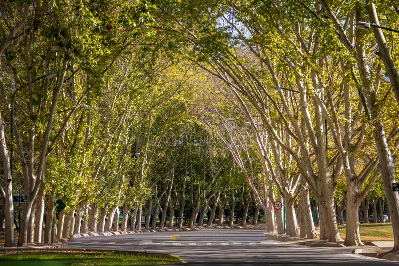 Algemeen San Martin Park - Mendoza, Argentinië stock afbeelding