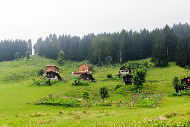 Algemene landschapsmening van beroemd Ayder-Plateau Rize, Turkije royalty-vrije stock foto's